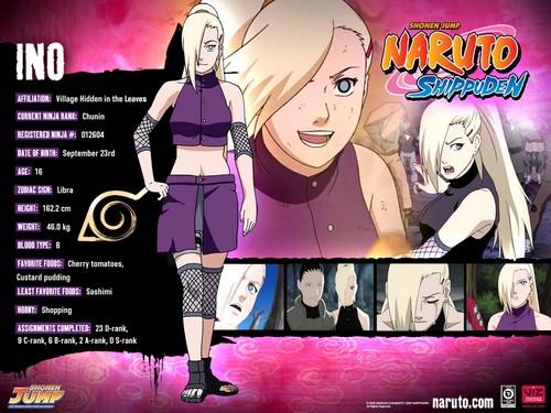 File:Naruto-characters-profiles-tsunade360-30617483-500-375.jpg