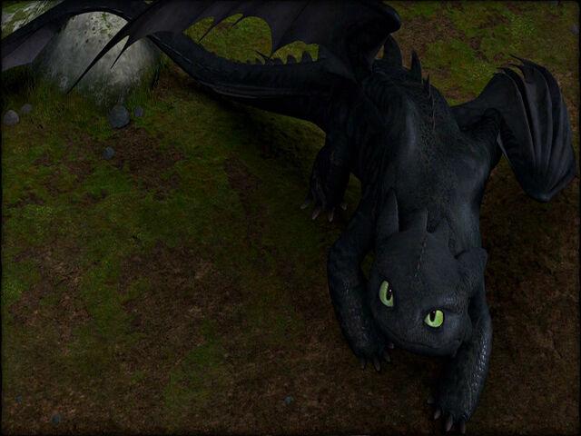 File:Toothless staring upwards.jpg