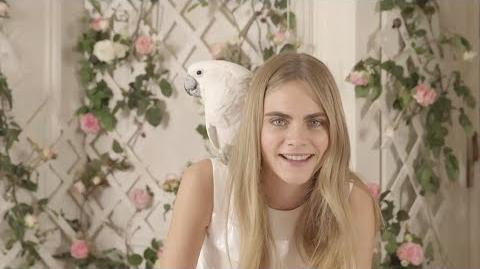 Mulberry 2014 - Talking to Cara