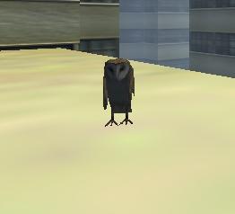 File:Barn owl.png