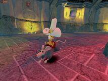Vince rat