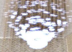 WC3ScrnShot 091511 072008 05