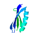 Streptococcal Protein