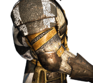 Warden right arm and shoulder