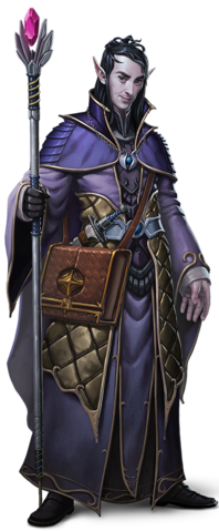 File:Sword Coast Legends - Companion - Soronil Noonshadow.png