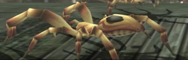 File:DS - Creature - Spider Light Brown.jpg