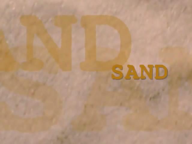 File:SandSpiderVsSand.jpg