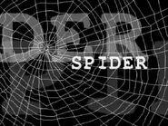 SpiderSpiderVsSand