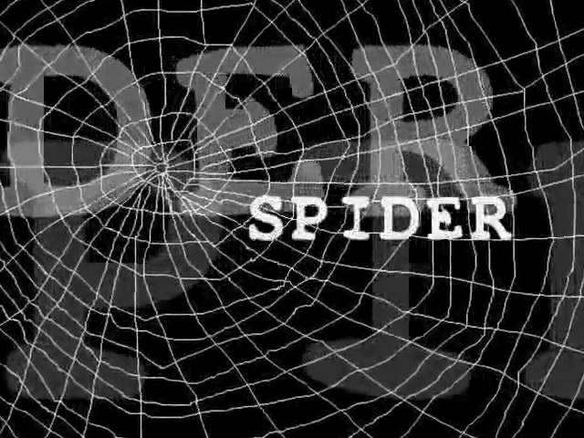 File:SpiderSpiderVsSand.jpg