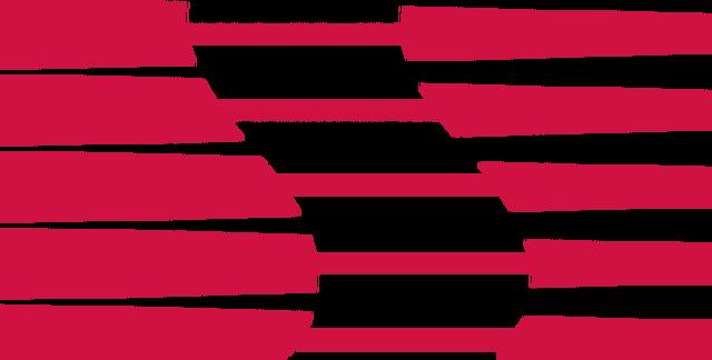 File:Saleen logo.png