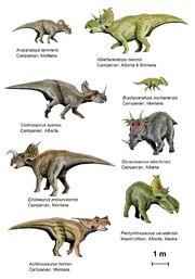 CeratopsianII BW