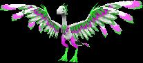Aopteryx-Head
