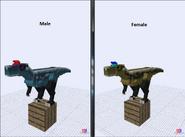 Cryolophosaurus (new)