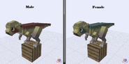 Pachycephalosaurus (new)