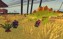 Stegos with Plants