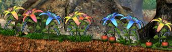 Planterose3
