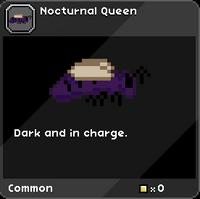 Nocturnal Queen