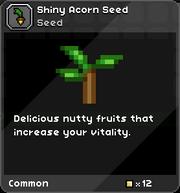 Shiny acorn seed1