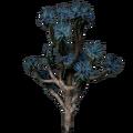 Joshua Tree.png
