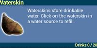 Waterskin