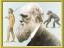 B.darwins voyage.png