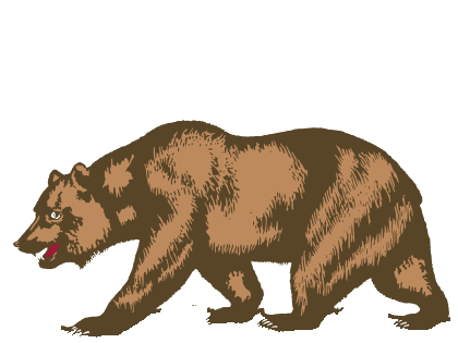 File:Bear.png
