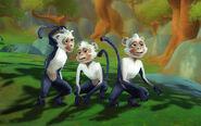 Monkeys update
