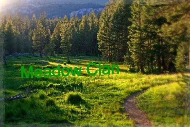 File:Meadow Clan flag v.1.jpg