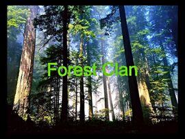 Forest Clan Flag v.2
