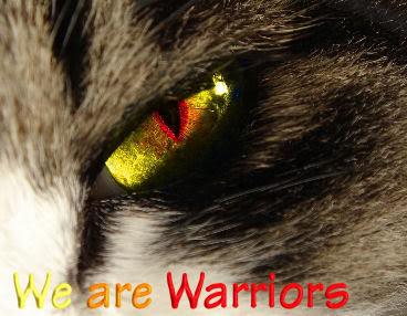File:WeAreWarriors.jpg