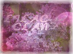 Lilacclan