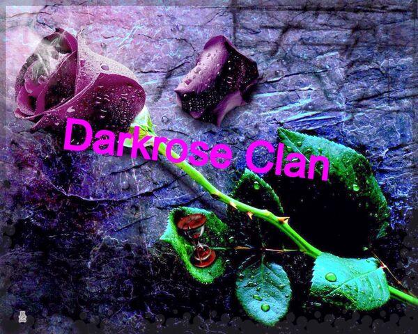 File:Darkrose.jpg