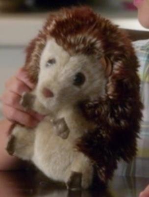 File:Mr. Hedgehog.jpg