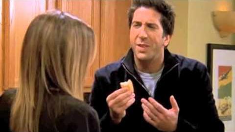 Ross and Rachel funniest scenes-0
