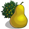 File:Pear Tree-icon.png