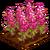Quinoa-icon