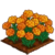 Marigold-icon