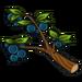 Juicy Berry-icon