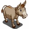 Mule Ado-icon