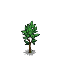 File:Pear Tree Sapling-icon.png