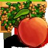 Peach Tree-icon