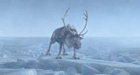 Sven on ice