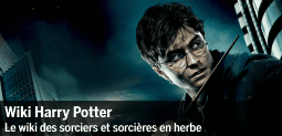 Fichier:Spotlight-harrypotter-20111201-255-fr.png