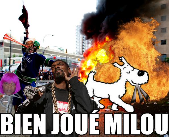Fichier:Bien Joué Milou.png