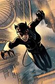 Catwoman ClosetConfidential