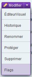 Fichier:Menu Modifier - Flags.png