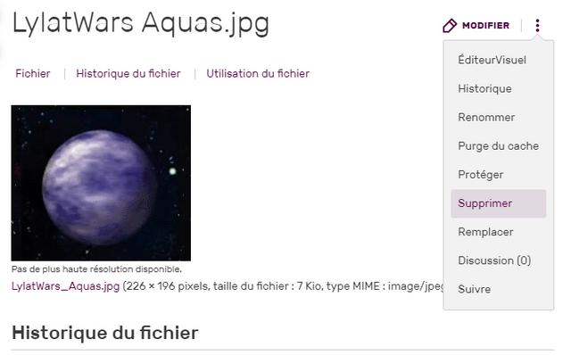 Fichier:Supprimer une image.png