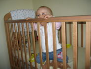 Standing-in-cot-9-nine-month-old-stella-