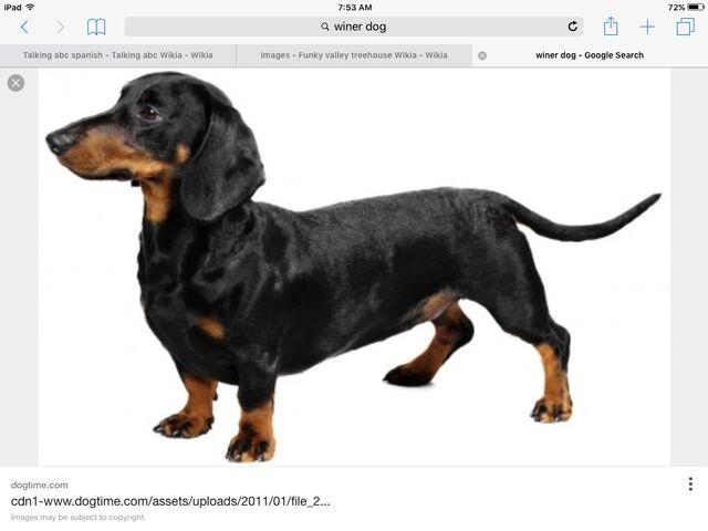 File:Dog farmer.jpeg