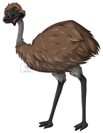 File:Eddie emu.jpg